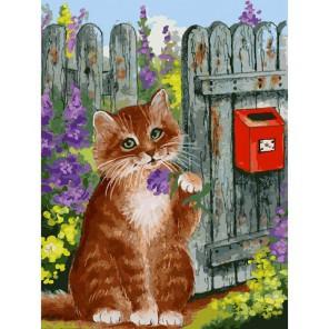Ожидание письма Раскраска картина по номерам на холсте Белоснежка