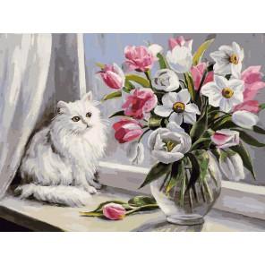 128-AS Весна на окошке Раскраска картина по номерам акриловыми красками на холсте Белоснежка