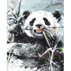 GX8222 Панда Раскраска картина по номерам акриловыми красками на холсте