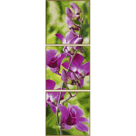 Орхидеи Триптих Раскраска картина по номерам Schipper ...