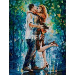 Влюбленная пара Алмазная мозаика на твердой основе Iteso