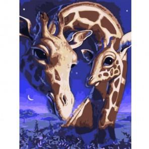 Два жирафа Раскраска картина по номерам акриловыми красками на холсте Paintboy