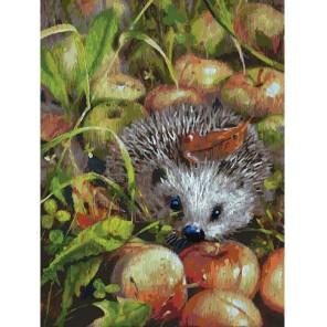 Яблочный ёжик Раскраска картина по номерам на холсте Белоснежка