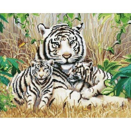 Белые тигры Алмазная мозаика вышивка на подрамнике Molly