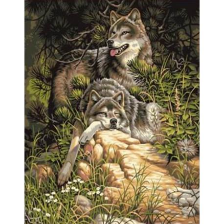 Раскраска по номерам Волки на отдыхе картина 40х50 см на ...
