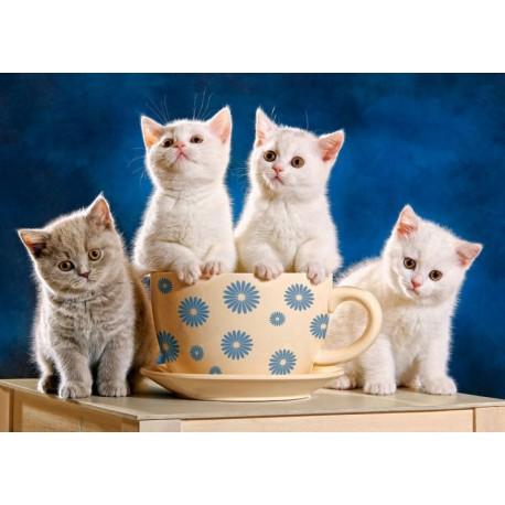 Четыре котёнка Пазлы Castorland