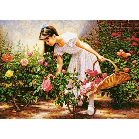 В саду роз Пазлы Castorland
