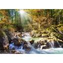Лесной ручей Пазлы Castorland