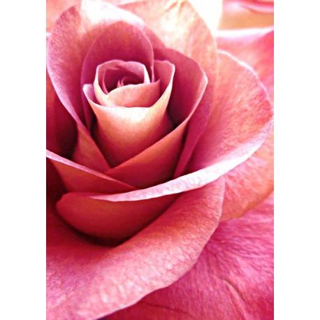 Глубина цвета Алмазная мозаика (вышивка) Гранни