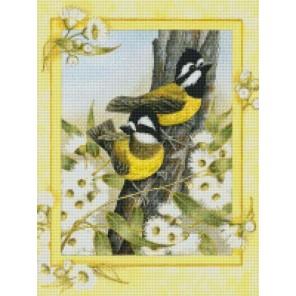 Птицы на ветке Алмазная мозаика на подрамнике Цветной
