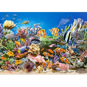 Цвета океана Пазлы Castorland