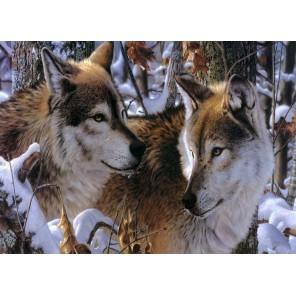 Схема вышивки Волки в зимнем лесу Набор для частичной вышивки бисером Color Kit