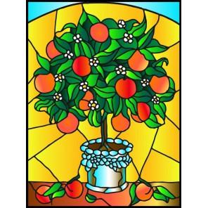 Апельсиновое дерево Набор с рамкой для создания картины-витража Color Kit