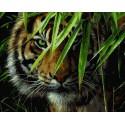 Изумрудный лес (художник Коллин Богл) Раскраска картина по номерам на холсте