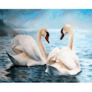 Благородные лебеди Раскраска картина по номерам на холсте