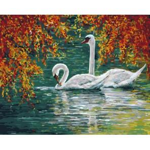 Лебединая пара Раскраска картина по номерам на холсте