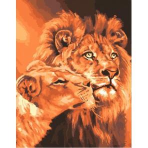 Львиная любовь Раскраска картина по номерам на холсте