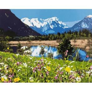 Альпы Раскраска картина по номерам на холсте
