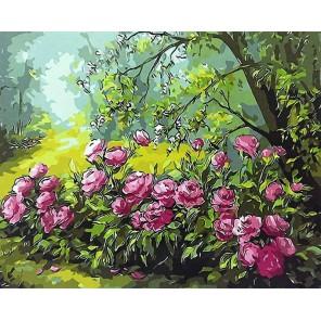 Лесные розы Раскраска картина по номерам на холсте