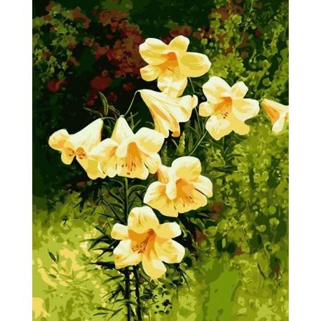 Картина по номерам акриловыми красками Желтые колокольчики ...