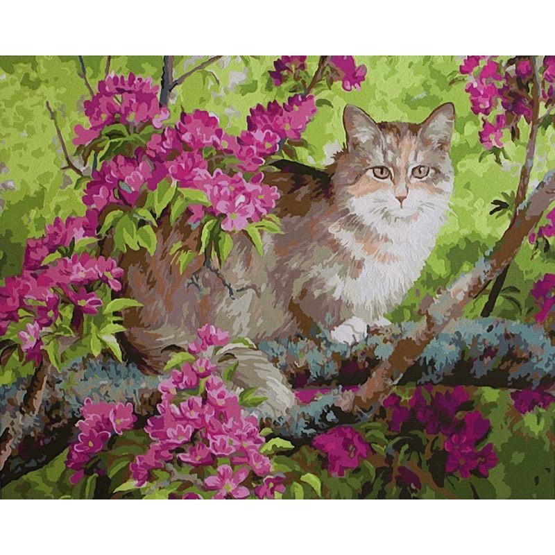 Раскраска по номерам Кошка на цветущем дереве (Персис ...