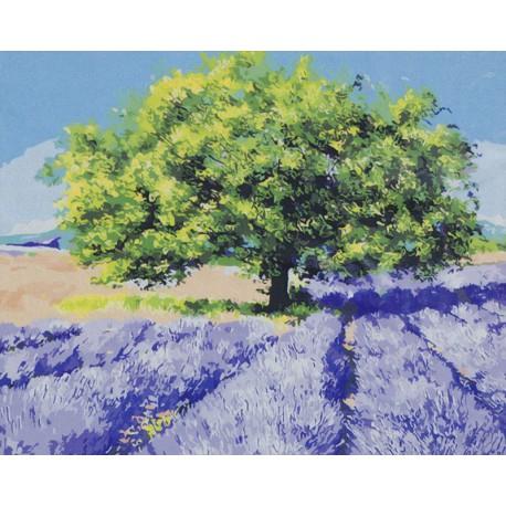 Жаркое солнце Прованса Раскраска картина по номерам на холсте