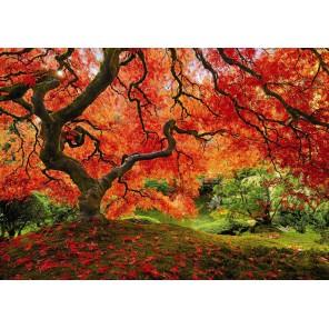 Осень в японском саду Пазлы Educa