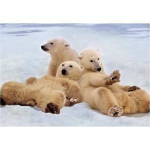 Полярные медведи Пазлы Educa