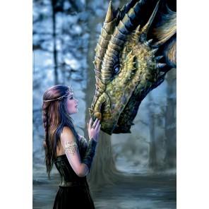 Девушка и дракон Пазлы Educa