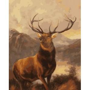 Сохатый олень Раскраска картина по номерам на холсте