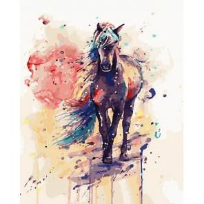 Волшебный конь Раскраска картина по номерам на холсте