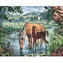 На водопое Раскраска картина по номерам на холсте