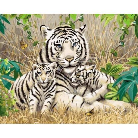 Семья белых тигров Раскраска картина по номерам на холсте