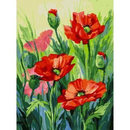 Красные маки (художник Татьяна Горбатенькая) Раскраска картина по номерам на холсте Белоснежка