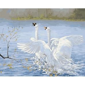 Танец лебедей Раскраска картина по номерам на холсте