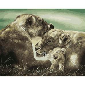 Семья львов Раскраска картина по номерам на холсте