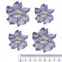 Сине-белые Цветы кудрявой фиалки для скрапбукинга, кардмейкинга Scrapberry's