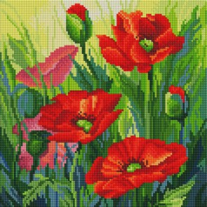 Красные маки Алмазная вышивка мозаика на подрамнике Белоснежка
