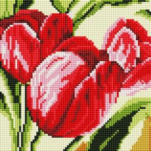 Тюльпаны Алмазная вышивка мозаика на подрамнике Белоснежка