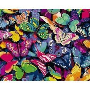 Бабочки Раскраска картина по номерам на холсте