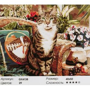 Украшение интерьера Раскраска картина по номерам на холсте