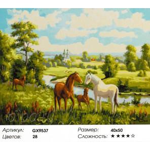 Лошади на лугу Раскраска картина по номерам на холсте
