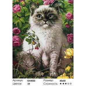 Количество красок и сложность Кот в моем саду Раскраска картина по номерам акриловыми красками на холсте