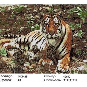 Количество красок и сложность Тигрица с малышами Раскраска картина по номерам акриловыми красками на холсте
