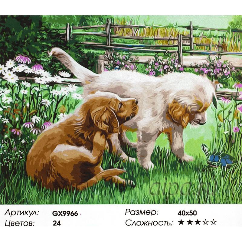 Раскраска по номерам Щенок и черепаха картина 40х50 см на ...