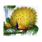 Очаровательный павлин Набор для вышивания Белоснежка