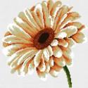 Белая гербера Набор для вышивания Белоснежка