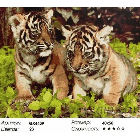 Два тигренка Раскраска картина по номерам на холсте