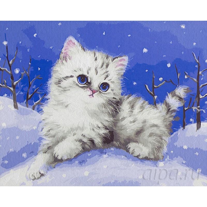 Раскраска по номерам Снежный котенок картина 40х50 см на ...