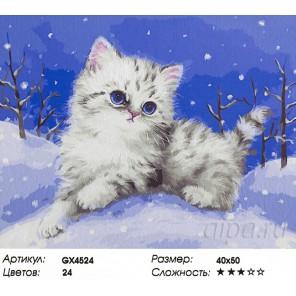Снежный котенок Раскраска картина по номерам на холсте
